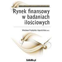Biblioteka biznesu, Project finance w inwestycjach infrastrukturalnych - Anna Wojewnik-Filipkowska (opr. miękka)