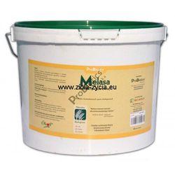 Melasa z trzciny cukrowej 10 litrów - ProBiotics