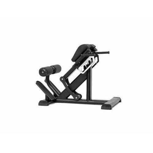Atlasy i wyciągi, Maszyna do ćwiczeń mięśni grzbietu BML 11 MasterSport