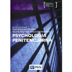 Psychologia penitencjarna - Ciosek Mieczysław, Beata Pastwa-Wojciechowska (opr. miękka)