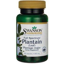 Babka zwyczajna FS Plantain Leaf 400mg 60 kapsułek SWANSON