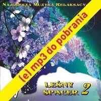 Pozostała muzyka rozrywkowa, (e) Leśny Spacer 2 - utwór nr 2 Radosny Szelest 09:02