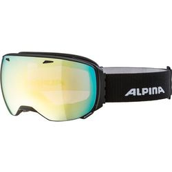 Alpina Sports gogle narciarskie Big Horn QVM black matt