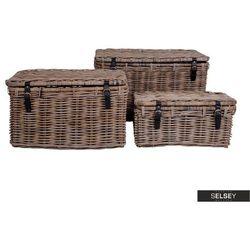 SELSEY Zestaw trzech kufrów Horatia