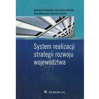 Książki o biznesie i ekonomii, System realizacji strategii rozwoju województwa (opr. miękka)