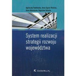 System realizacji strategii rozwoju województwa (opr. miękka)
