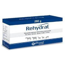 Rehydrat a 280 g - preparat zawierający elektrolity
