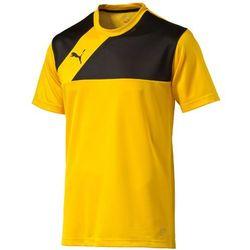 Piłkarska koszulka treningowa Esquadra Puma 65437907