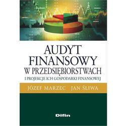 Audyt finansowy w przedsiębiorstwach i projekcje ich gospodarki finansowej - Marzec Józef, Śliwa Jan (opr. broszurowa)