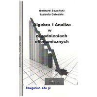 Matematyka, Algebra i Analiza w zagadnieniach ekonomicznych - Wysyłka od 3,99 - porównuj ceny z wysyłką (opr. miękka)