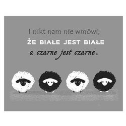 Obraz 40 x 50 cm Owce