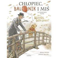 Literatura młodzieżowa, Chłopiec, balonik i miś Ilustrowana opowieść [Rubiano Brittany] (opr. twarda)