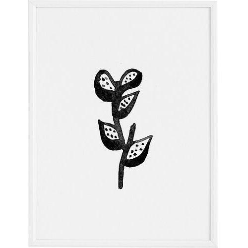 Plakaty, Plakat Plant 70 x 100 cm