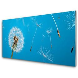Panel Szklany Dmuchawce Kwiaty Natura