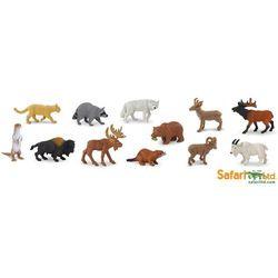 Safari Ltd. Tuba - Las Ameryka Północna - BEZPŁATNY ODBIÓR: WROCŁAW!