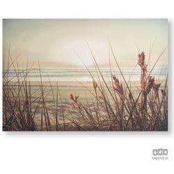 Obraz Piaszczysta plaża - zachód słońca 105889 Graham&Brown