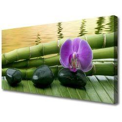Obraz na Płótnie Kwiat Kamienie Bambus Natura
